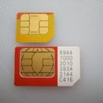 MicroSim und standard SIM