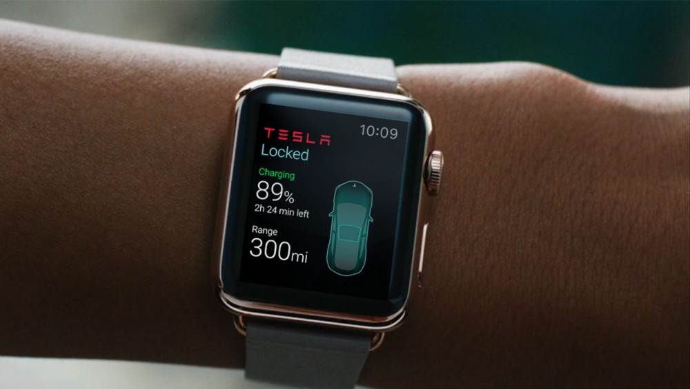 Apple Watch Tesla Interface