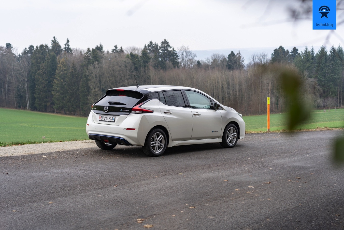 Nissan Leaf II